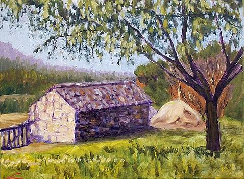 Old barn near Pedraza by Elena Sokolova