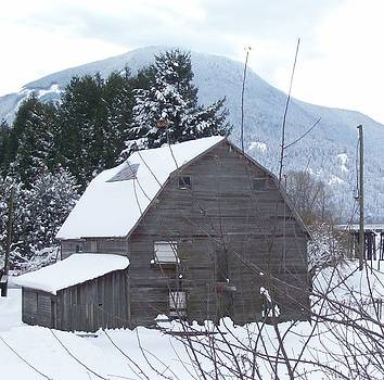 Old Barn New Snow by Cody Williamson