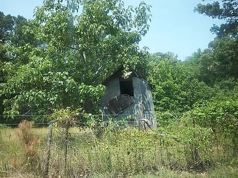 Old Barn by Scarlett Stephenson