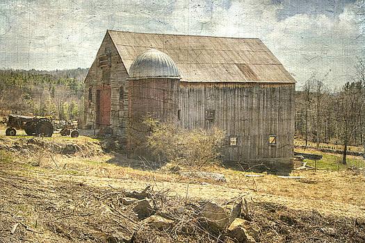 Old Barn Still Standing  by Betty Pauwels