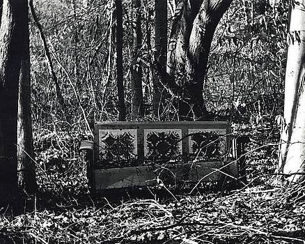 Old Bench by Chelsea Hudgens