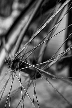 Old Bicycle Wheel by Rick Berk