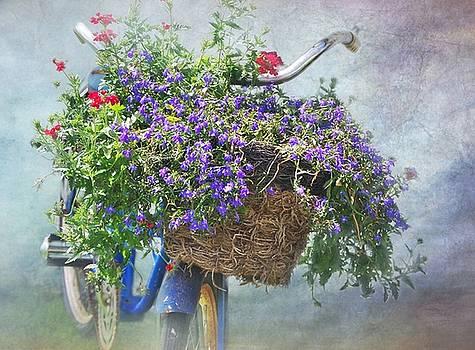 Old Bike and Summer Flowers by Stephanie Calhoun