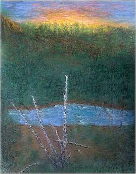 Old Birch by Brian Higgins