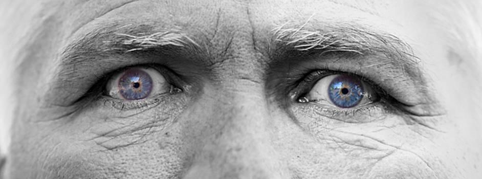 James BO  Insogna - Old Blue Eyes