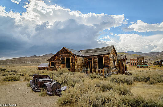 Old Bodie House by Mike Ronnebeck