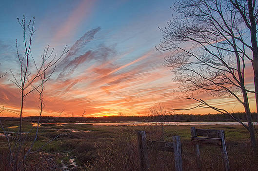 Old Bog Sunset by Beth Sawickie