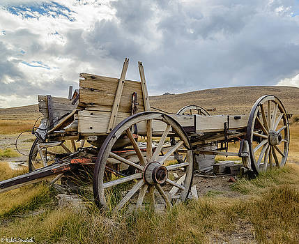 Old Buckboard Wagon by Mike Ronnebeck