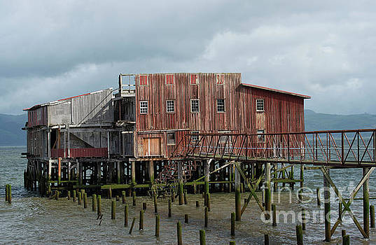 Old Building Astoria Oregon by Loriannah Hespe