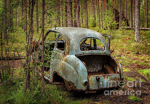 Old car in forest by Sophie McAulay