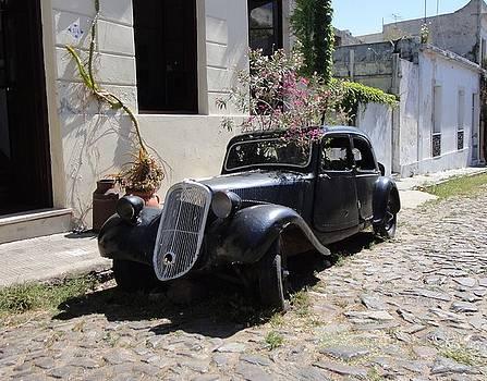 Old Car Planter Box by Shana Sanborn