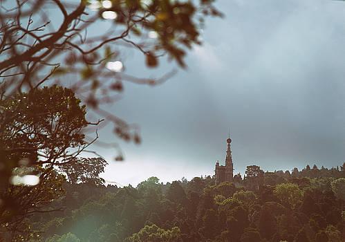 Old Castle by Zina Zinchik