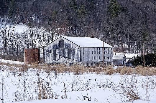Old Chicken Barn by Stephanie Calhoun