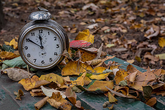 Old clock on autumn leaves by Julian Popov