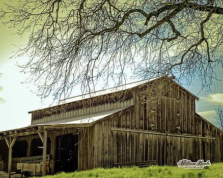 William Havle - Old County Barn