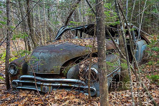Old Dodge Car by Alana Ranney