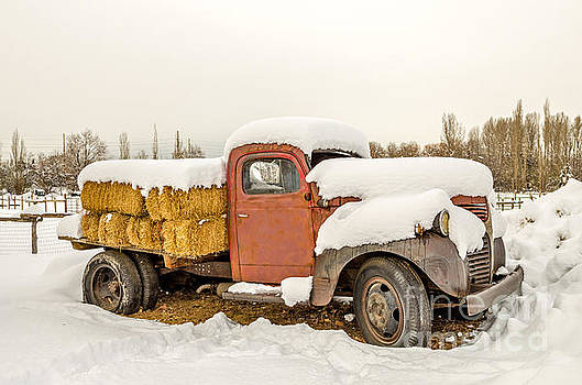 Old Dodge Truck Loaded with Hay Bales by Sue Smith