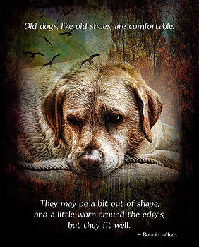 Old Dogs are Like Old Shoes by Norma Rowley