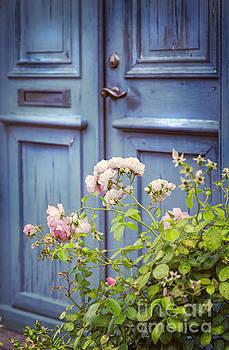 Sophie McAulay - Old door and rosebush
