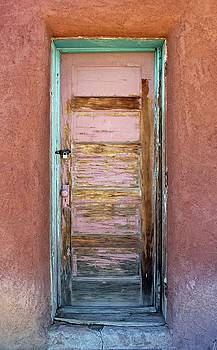 Old Door by Ann Sullivan