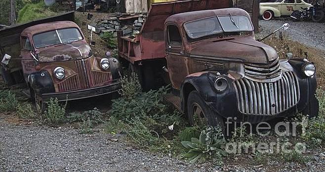 Old Dumptrucks by Anthony Jones