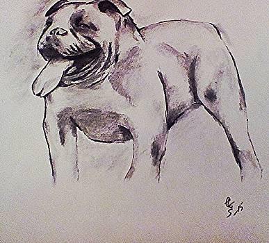 Old English Bull by Crystal Webb