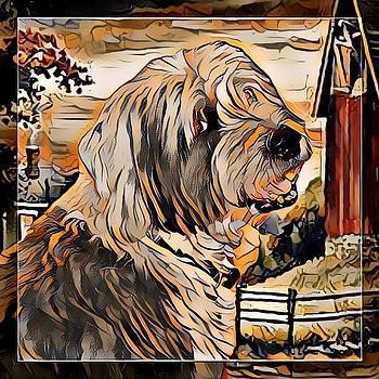Old English Sheepdog by Kathy Kelly