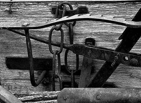 Old Farm Equipment BW by Kae Cheatham