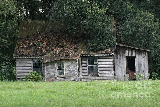 Old farmhouse by Lynn Jackson