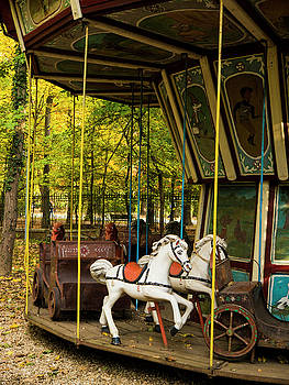 Old-Fashioned Merry-Go-Round by Rae Tucker