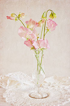Sandra Foster - Old Fashioned Sweet Peas
