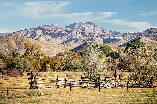 Old Fence by Ramona Murdock