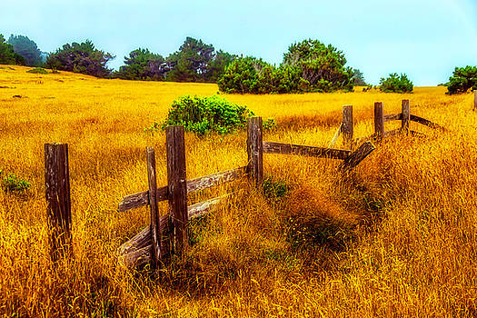 Old Fence Summer Pastures by Garry Gay
