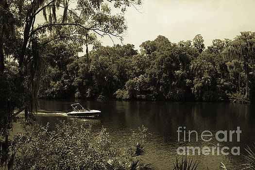 Old Florida by Marilyn Carlyle Greiner