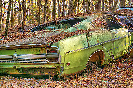 Ford Torino by Dennis Dugan