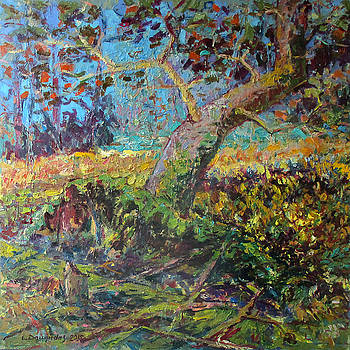 Old Forest by Liudvikas Daugirdas