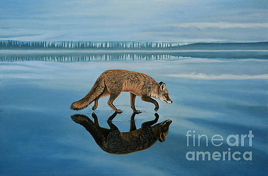 Old Fox on Thin Ice by Allan OMarra