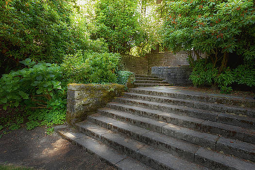 Old Garden with Stone Walls and Stair Steps by David Gn