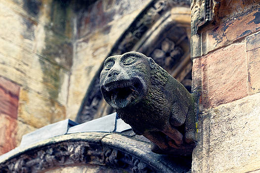 Old Gargoyle by Scott Hill
