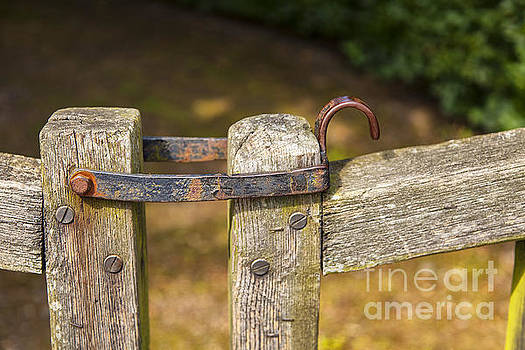 Sophie McAulay - Old gate hinge