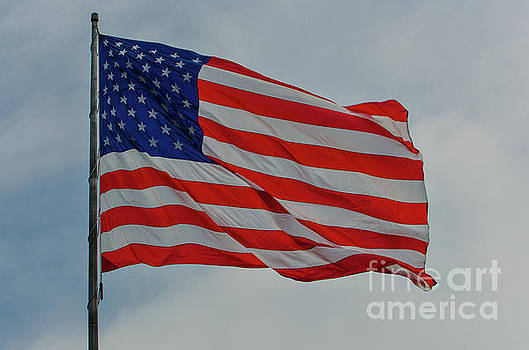 Old Glory Flapping in the Wind over Charleston by Dale Powell