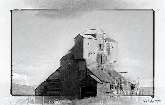 Old Grain Elevator by Chris Armytage
