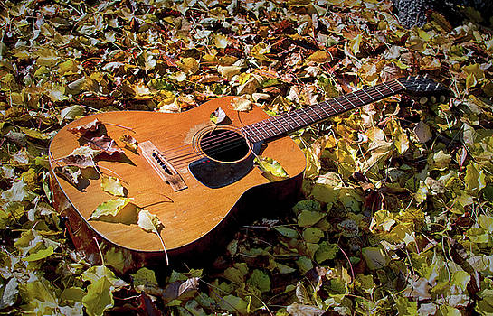 Old Guitar But Not Willie Nelson's Trigger by Bill Swartwout