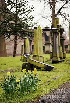 Sophie McAulay - Old headstones in graveyard