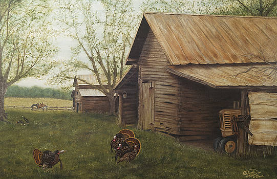 Old Home Place by Deborah Collier