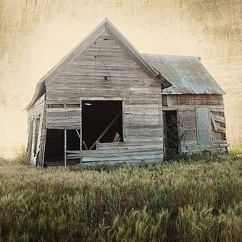 Old Homestead II by Patty Plummer