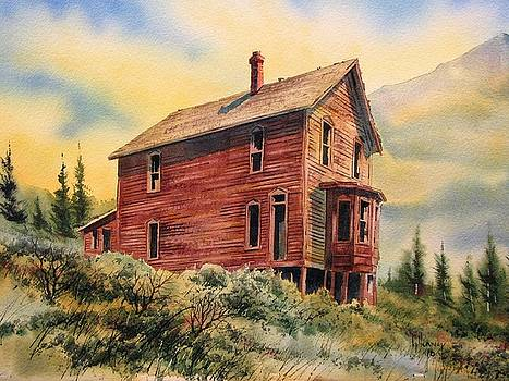 Old House Animas Forks Colorado by Kevin Heaney
