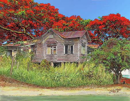 Old House Guyana 1a by James  Mingo