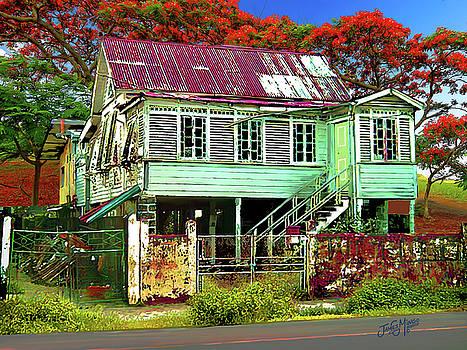 Old House Guyana 1b by James  Mingo