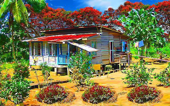 Old House Guyana 1e by James  Mingo